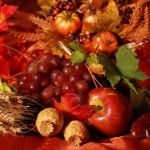 Still life and harvest or table decoration for Thanksgiving